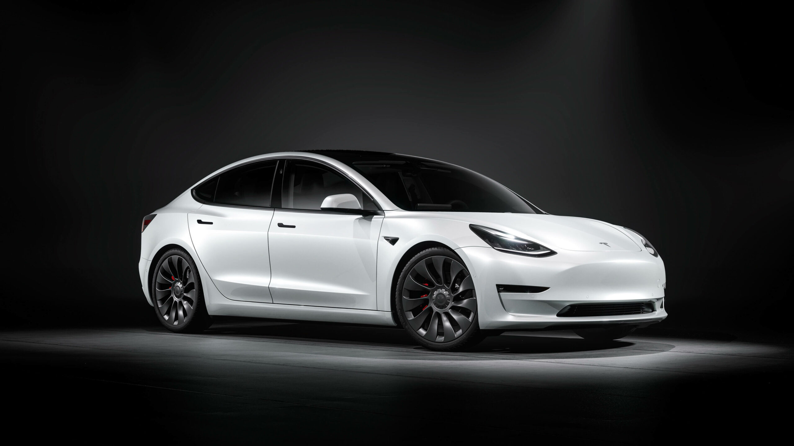 2021 Tesla Model 3 wit